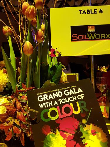 WaterAid Ball and SoilWorx